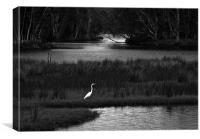 Backwater, Canvas Print