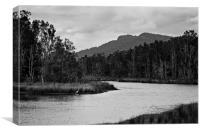 Backwater #2, Canvas Print