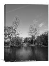 Lake at Wisley Gardens, Canvas Print