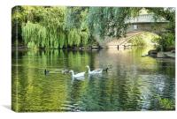 Stanley Park Boating Lake., Canvas Print