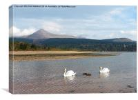 Goatfell.Isle of Arran., Canvas Print