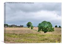 The Hilltop farm., Canvas Print