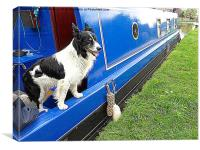 Collie aboard a barge., Canvas Print