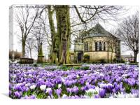 Springtime at St Chads. , Canvas Print