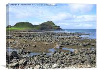 The Giants Causeway. , Canvas Print