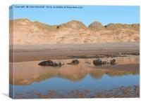 Sandhills at Newborough Beach., Canvas Print