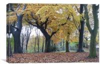 Autumn at Heaton Park. , Canvas Print