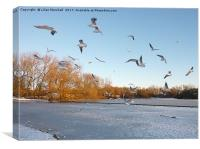 Winter in Stanley Park. Blackpool, Canvas Print
