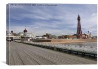 The Tower .Blackpool  , Canvas Print