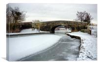 Frozen Lancaster Canal, Canvas Print