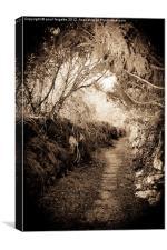 path through time, Canvas Print