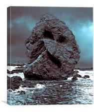 The Rock Face., Canvas Print