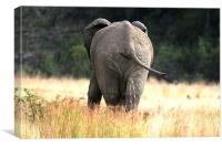 Does the grass make my bum look big., Canvas Print