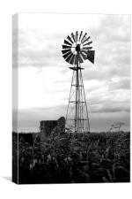 The windmill, Canvas Print