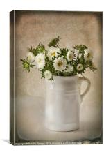 Asters, Canvas Print
