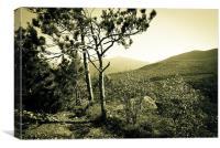 Mountain View In Mono, Canvas Print