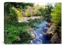Mountain River Pass, Canvas Print