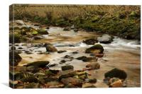 SHALLOW SWALE, Canvas Print