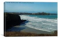 IT'S NEWQUAY, Canvas Print