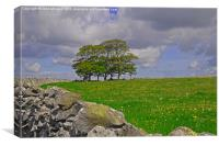 Trees on the Mendips., Canvas Print