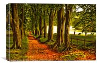 Autumn's Golden Tree lined Pathway, Canvas Print
