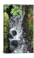 Waterfall, Canvas Print