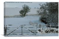 Winters Day, Canvas Print