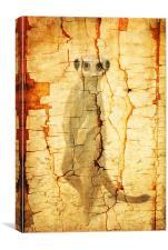 Cracked Meerkat guard, Canvas Print