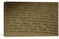 Clutch, Canvas Print