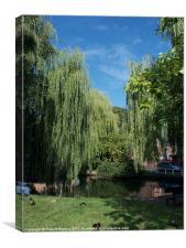 Village Pond in Haxby, Canvas Print