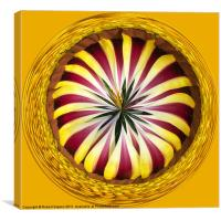 Spherical Paperweight Gazania Sphere, Canvas Print