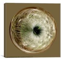 Spherical Paperweight dandylion, Canvas Print