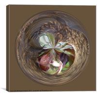 Spherical bird paperweight, Canvas Print