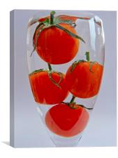 Tomatoes in glass, Canvas Print