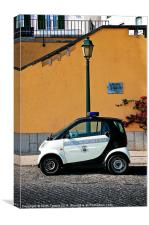 Smart Cops Canvases & Prints