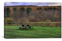 Parc Cwm Darran, Canvas Print