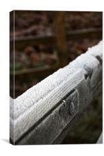 Frosty gate, Canvas Print