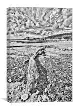 Driftwood Sketch, Canvas Print