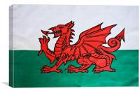 The Welsh Dragon, Canvas Print
