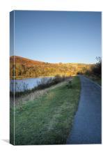 Autumn Pond 5, Canvas Print