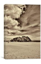 St Catherines Island 8, Canvas Print