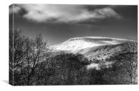 Fan Fawr Brecon Beacons 3 Mono, Canvas Print