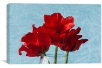 Tulips 1, Canvas Print