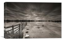 Penyfan Pond Long Exposure Mono, Canvas Print