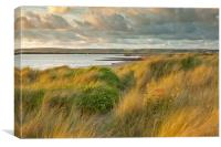 Last light On Instow Sand Dunes, Canvas Print