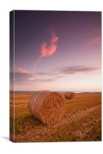 Springfield Farm Sunset, Canvas Print