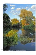 Grantchester Cam, Canvas Print
