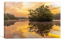 Sunrise in Epping Forest, Canvas Print