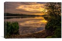Sunrise at Whitlingham Country Park , Canvas Print