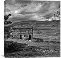 Dales Barn, Canvas Print